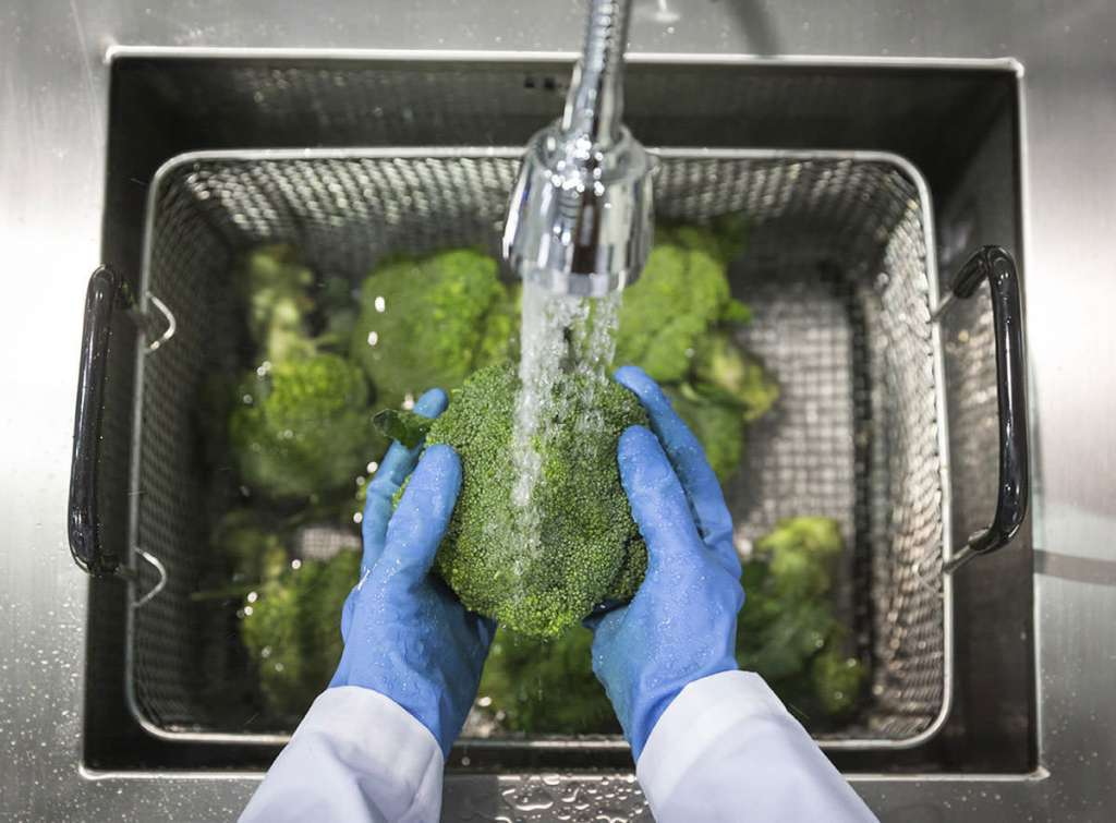 Cleaning broccoli